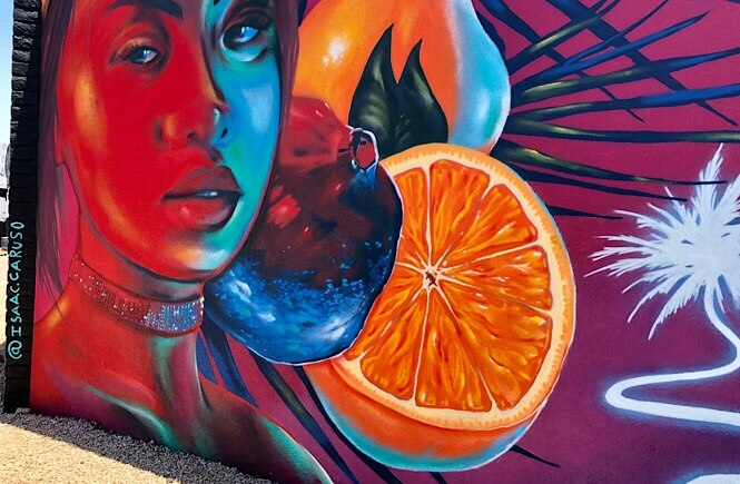 Phoenix Street Art: 11 Incredible Roosevelt Row Murals featured by top US travel blog, More than Main Street