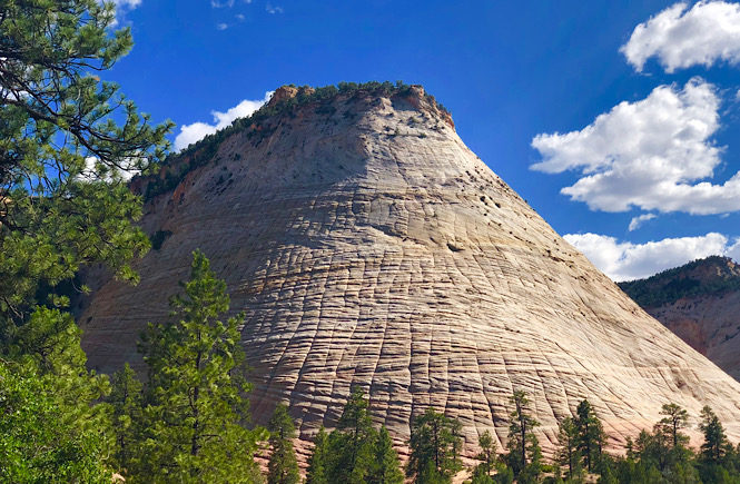 How to spend one day in Zion National Park: a travel guide featuring the top things to do by top US travel blog, More than Main Street; checkerboard mesa.
