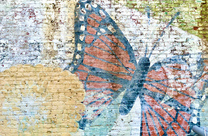 Faded butterfly mural in downtown Raleigh NC featured by NC local and top US travel blog More than Main Street