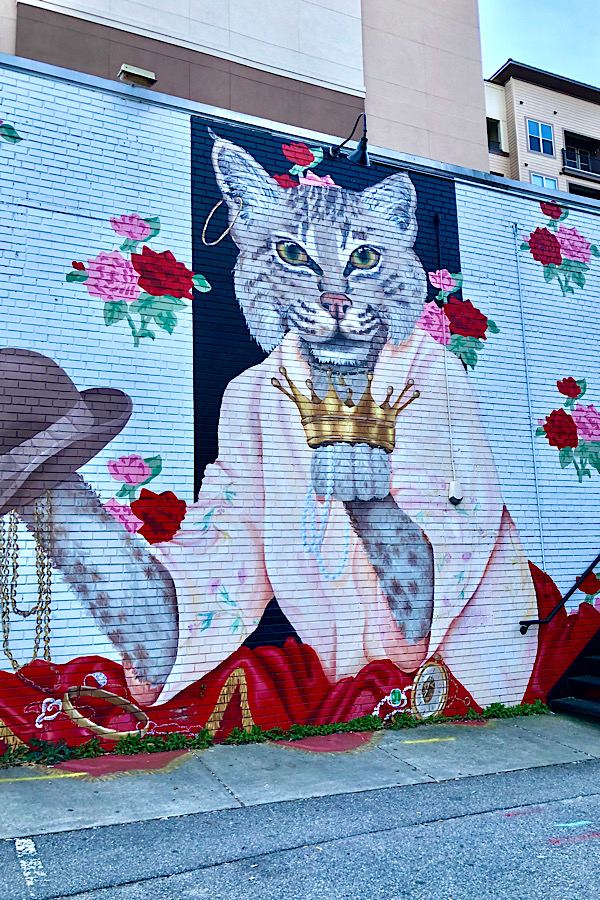 Top 10 Raleigh NC Murals to Visit with your Family featured by top US travel blog More than Main Street: bobcat mural.