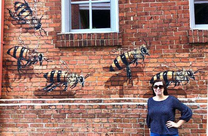 Burts Bees wall mural in Downtown Durham called Swarm.