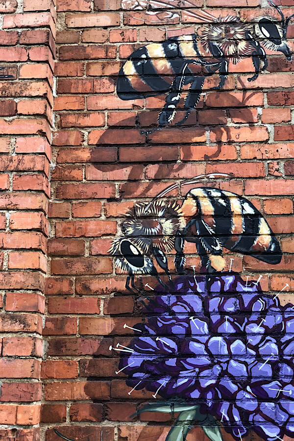 Must See Durham NC Wall Murals & Street Art featured by local NC travel blog, More than Main Street-