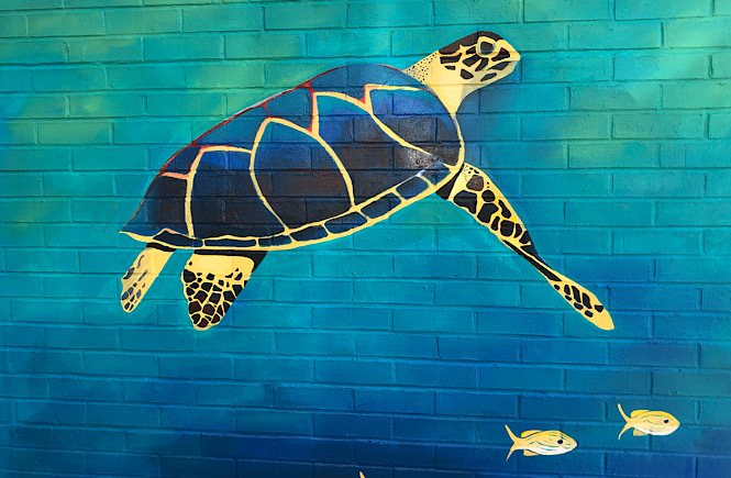Must See Durham NC Wall Murals & Street Art featured by local NC travel blog, More than Main Street- turtle wall mural.