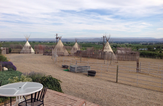 Staying in a teepee in Washington state is a very unique and cool experience.
