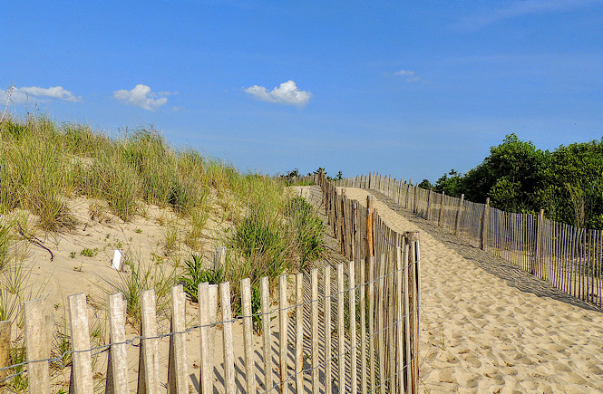 Cape Henlopen State Park in Delaware is a great family friendly beach on the east coast of the USA featured by top US travel blog, More than Main Street.