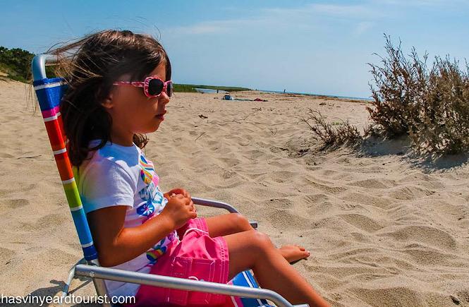 Children will love the beaches on Martha's Vineyard.