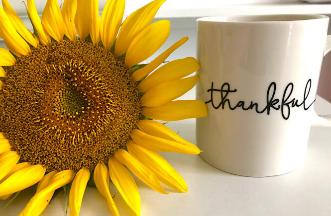 Being Grateful: 100 Unique Things to Be Thankful for featured by top lifestyle blog, More than Main Street. Image of sunflower and thankful coffee mug.