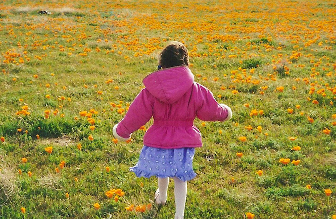 Little girl running through a field of flowers while traveling.