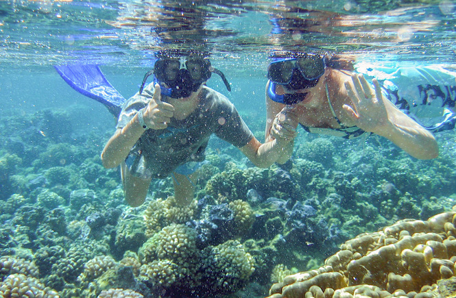 two people snorkeling in the Bahamas.