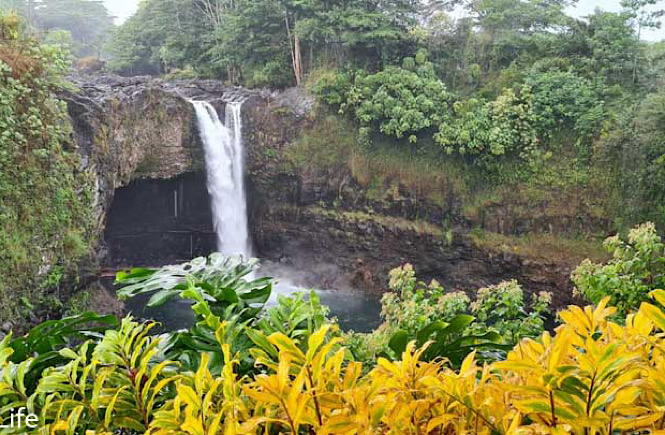 A Big Island road trip in Hawaii with lush forests and waterfalls belongs on every USA bucket list.