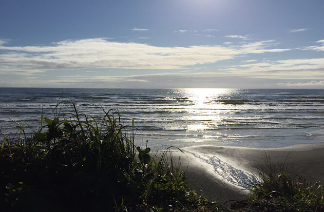Kalaloch Beach in Olympic National Park- photo courtesy of Tripscholars.