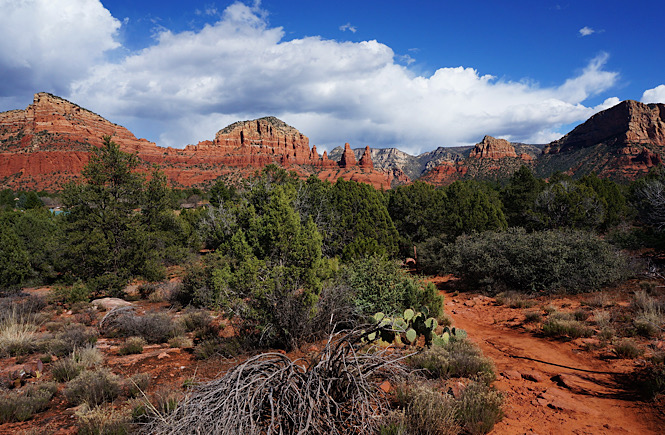 The incredible scenery in Sedona Arizona- the red rocks are a gorgeous contrast against the blue cloudy skies.