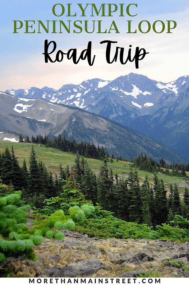 Planning a road trip to Olympic National Park featured by top US family travel blog, More than Main Street.